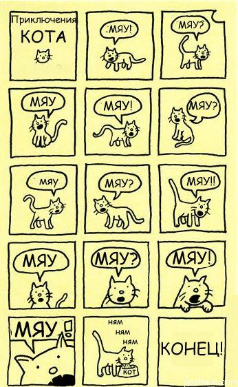 Приключения кота