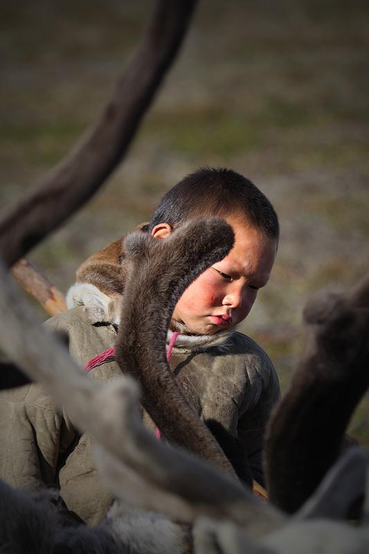 Люди и олени