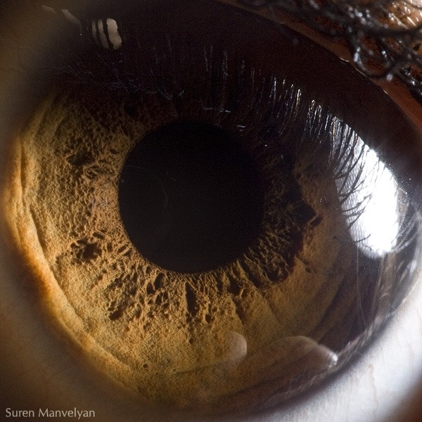 Загляни в глаза