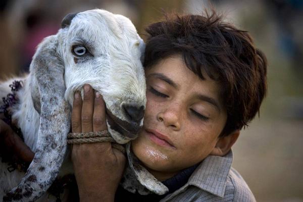 Фотоподборка. Животные и люди 7